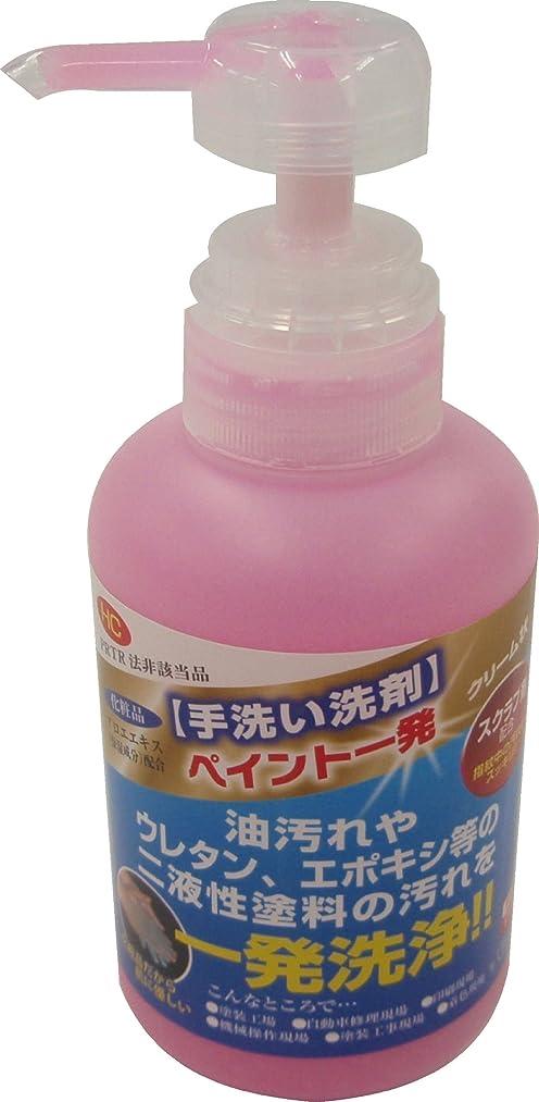 瀬戸際邪悪なマチュピチュ鈴木油脂 手洗い洗剤 ペイント一発 350g