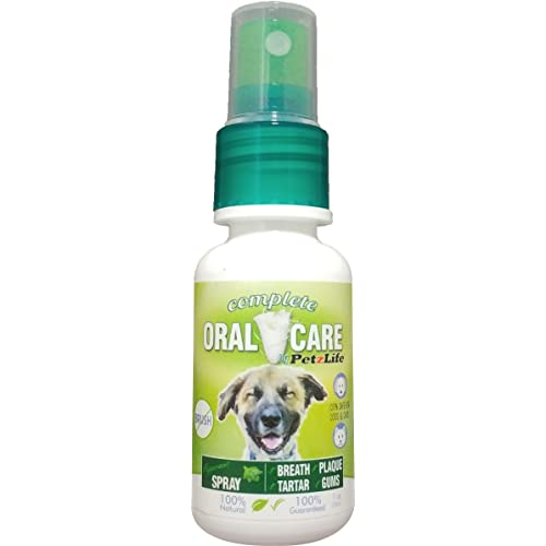Products for Dogs Bad Breath: Amazon com