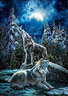 Kit de pintura de diamantes 5D, diseño de lobo en la luna, bordado de diamantes de imitación, para decoración de la pared del hogar, 30 x 40 cm