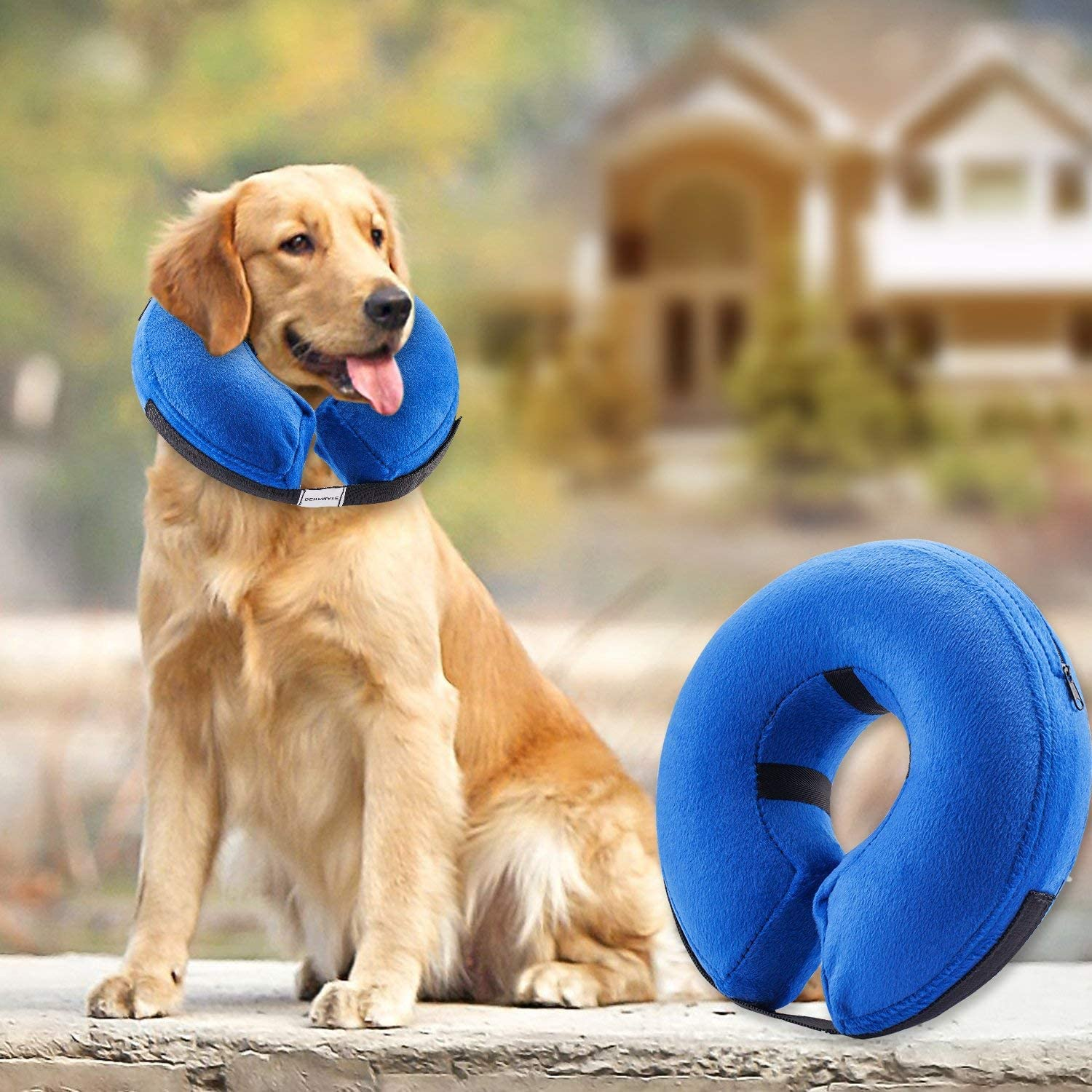 BENCMATE Predective Inflatable Collar for Dogs and Cats  Soft Pet Recovery Collar Does Not Block Vision ECollar(Large)