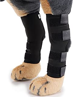 Dog Hock Ankle Brace for Torn Acl Hind Back Leg Dog Canine Protector Rear Leg Hock Joint Wrap Protects Compression Sleeves for Injury and Sprain Protection