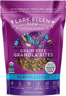 lark ellen grain free granola