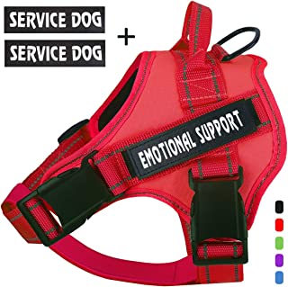 t harness for dogs