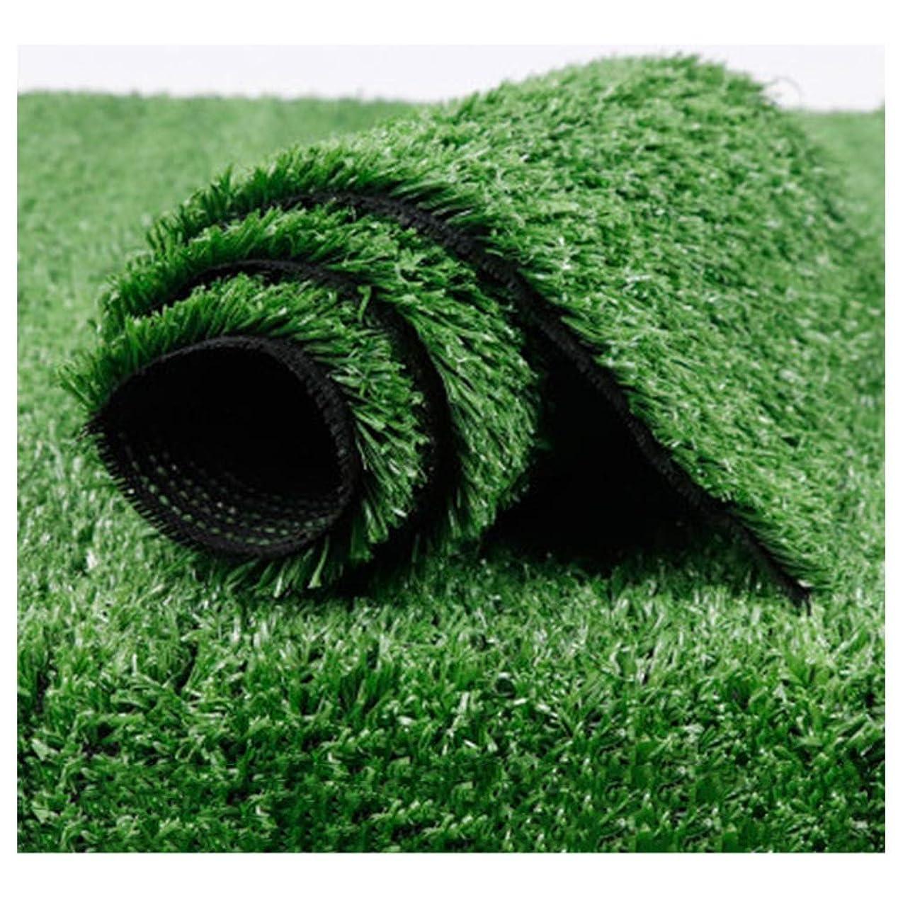 輝くビクター感謝XIAODONG 人工芝 15mmの草の高さ 多機能の使用 掃除が簡単、壁の装飾/展示会/風景 2 * 1m (Size : 2*3m)