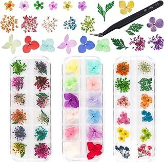 3 Boîtes Fleurs Séchées D'ongle Naturelles Fleurs,Fleurs Séchées Nail Décoration, Nail Art Décoration Fleurs,pour Bijoux E...