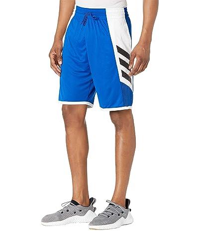 adidas Pro Madness Shorts (Collegiate Royal) Men