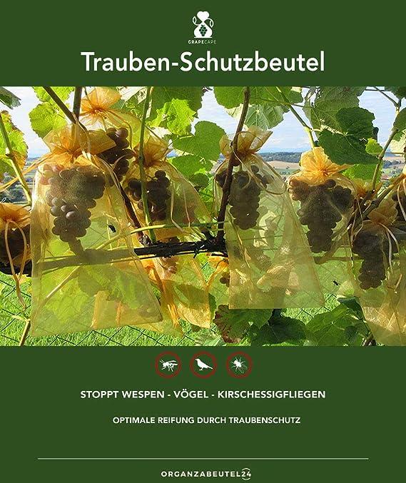 50 bolsas protectoras para las uvas, tamaño 30x20 cm, color: verde oscuro, para la protección contra las avispas, pájaros, moscas de la cereza e ...