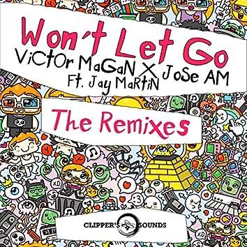 Won't Let Go (feat. Jay Martin) [The Remixes]