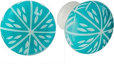 Nicola Spring Resin Cupboard ladeknoppen - Turquoise - verpakking van 6