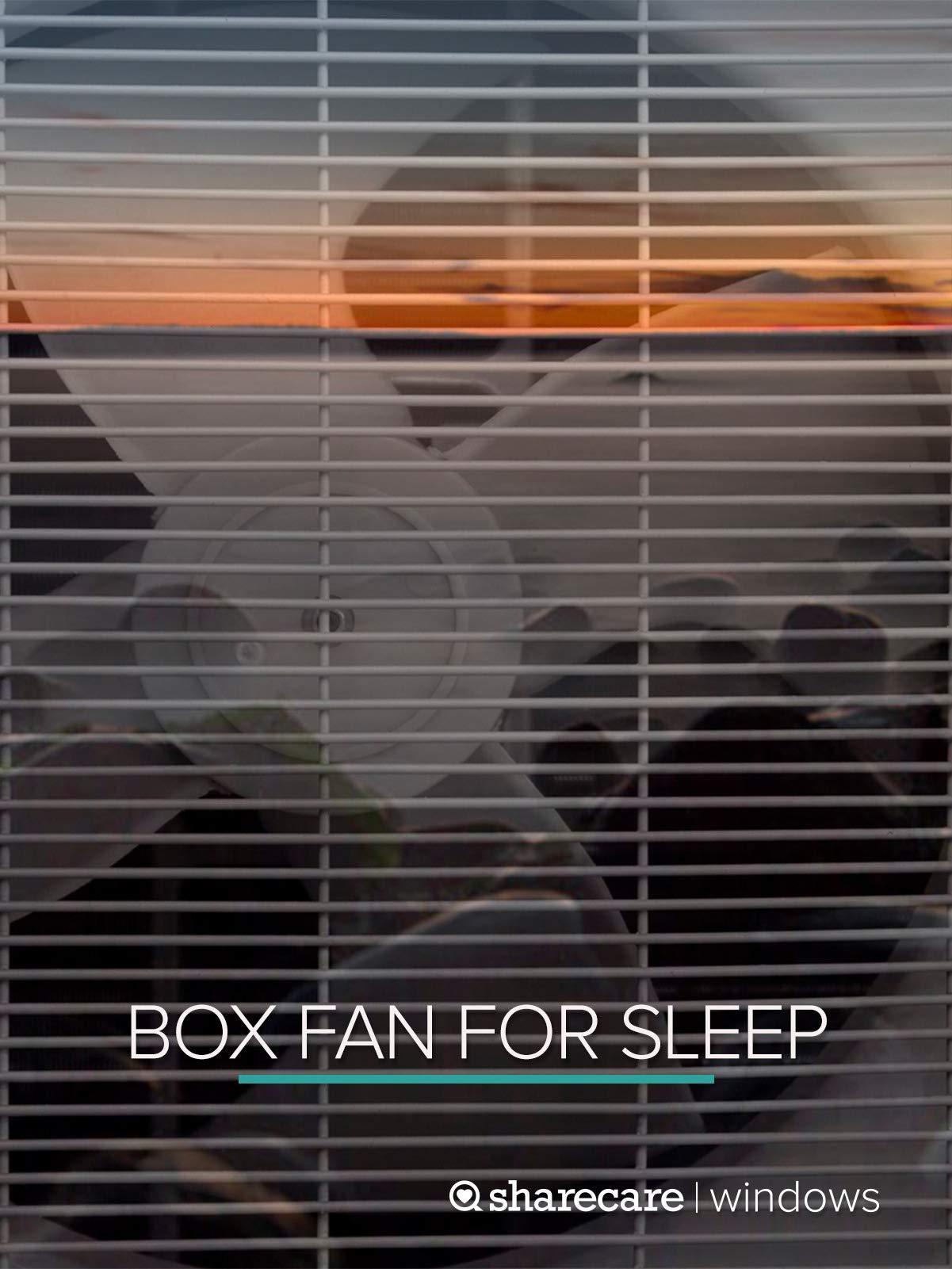 Slow Speed Box sleep hours