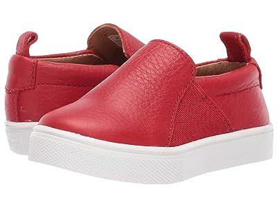 Freshly Picked Slip-On Sneaker (Toddler/Little Kid) (Cherry) Kid