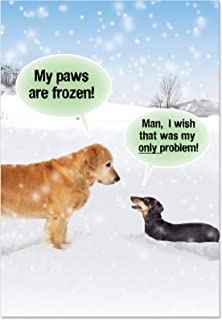 NobleWorks, My Paws Are Frozen - Box of 12 Adult Christmas Notecards with Envelopes - Funny Golden Retriever, Xmas Dog Card Humor B5953