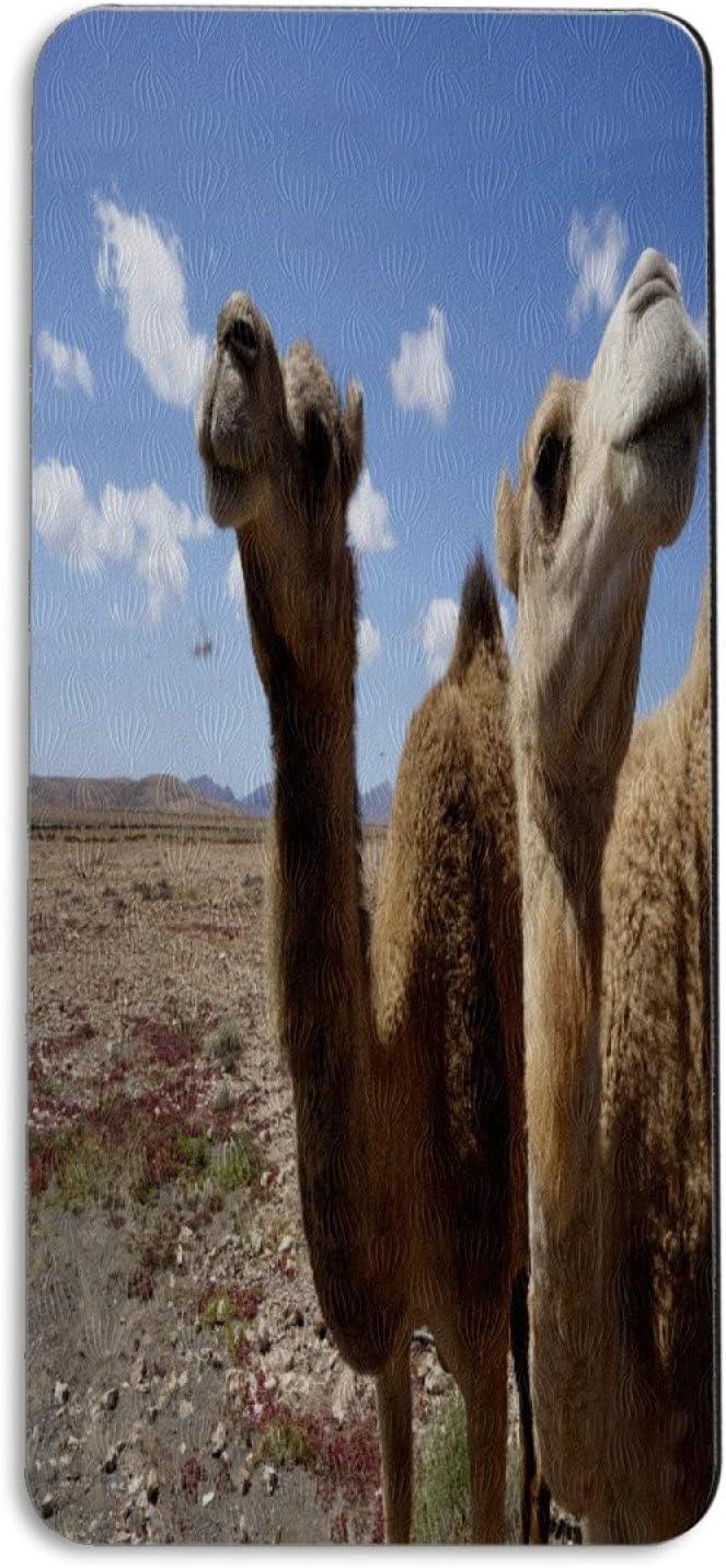 Sacramento Max 89% OFF Mall FCZ Yoga Mat Nature Desert Camel Looking Sky Spor Animal Workout