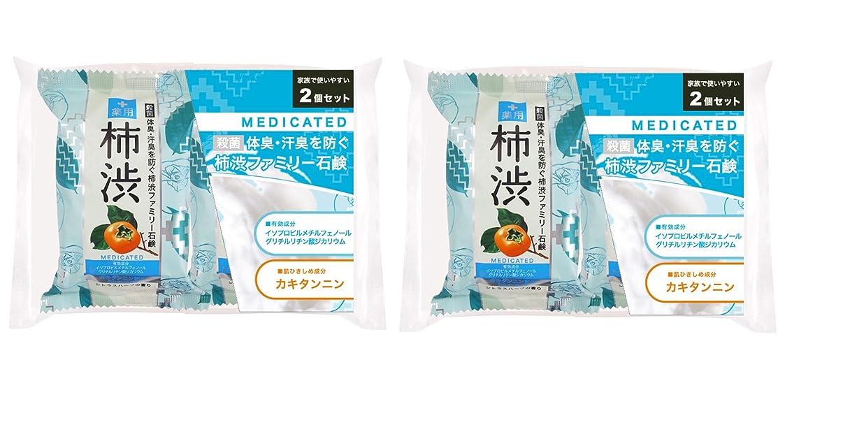 レイアウト音楽取る薬用ファミリー 柿渋石けん 2コパック ×2セット