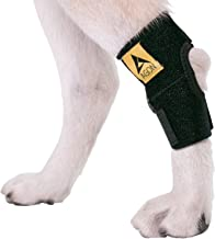 Agon Dog Canine Rear Hock Joint Brace Compression Wrap with Straps Dog for Back Leg Protects Wounds. Heals Prevents Injuries and Sprains Helps with Loss of Stability Caused by Arthritis