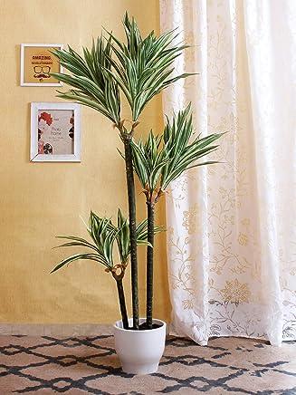 Fourwalls Polyester and Polyurethane Artificial Dracaena Floor Plant (20 cm x 20 cm x 150 cm, Green/White)