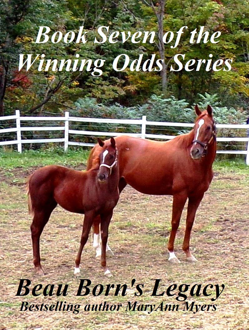 Download Beau Born's Legacy: Book Seven of the Winning Odds Series (English Edition)