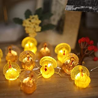 Decorative Fairy Mini Turkey String Lights Autumn Garland Cute Novelty Fall Lights 20 LEDs 8ft Battery Operated for Thanks...