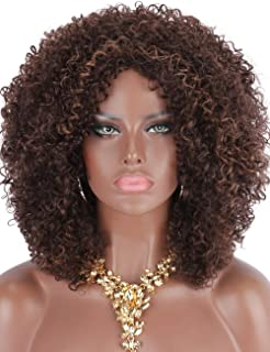 Kalyss Big Bouncy African American Women's Wig Medium Long Afro Kinky Curly Synthetic Hair Wigs for Black Women (Brown with Highlights)