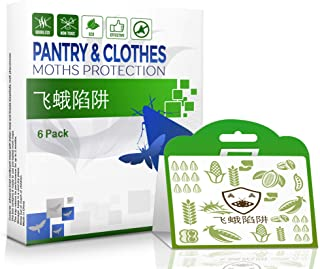 Dual-Action Moth Trap 6-Pack Against Pantry & Clothes Moths – Pantry Moth Trap & Wool Moth Trap in ONE Double Protection Enhanced Pheromone Moth Trap – Eco-Friendly – with No Pesticides and Chemicals