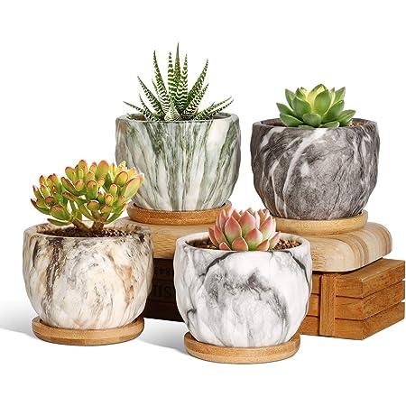 T4U 植木鉢 多肉植物鉢 サボテン鉢 陶器製 マーブル模様 ミニ植物適用 2号鉢 4点入り