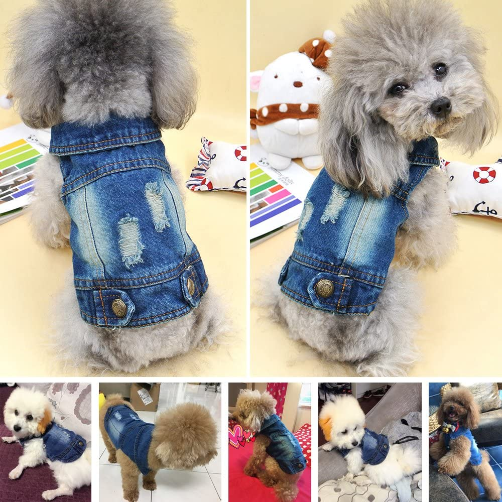 SILD Pet Clothes Dog Jeans Jacket Cool Blue Denim Coat Small Medium Dogs Lapel Vests Classic Hoodies Puppy Blue Vintage Washed Clothes : Kitchen & Dining
