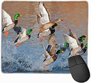Fashion Beauty Mallard Ducks Hunting Mini Gaming Mouse Pad Fast and Accurate Control for Gaming and Office(25 X 30cm)