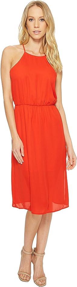 American Rose Isabella High Neck Midi Dress
