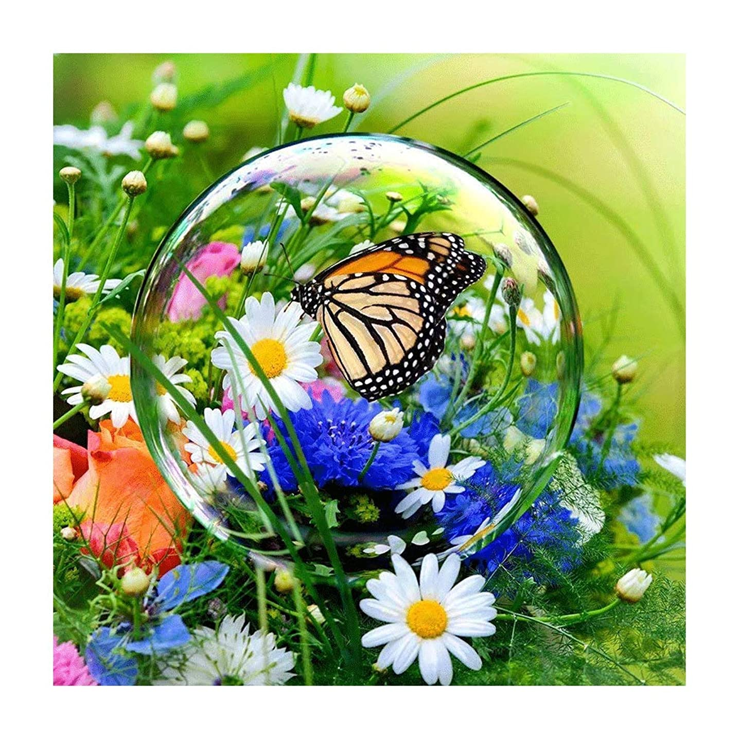 5D DIY Diamond Painting by Number Butterfly Dew Daisy Flower Cross Stitch DIY Diamond Stitch Kit Mosaic Full Round Crystal Diamond Embroidery Painting
