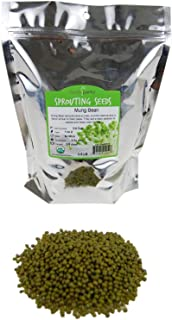 Mung Bean Sprouting Seed: 2.5 Lb - Organic, Non-GMO - Handy Pantry Brand - Dried Moong Beans for Sprouts, Garden Planting, Chinese & Asian Cooking, Soup & More