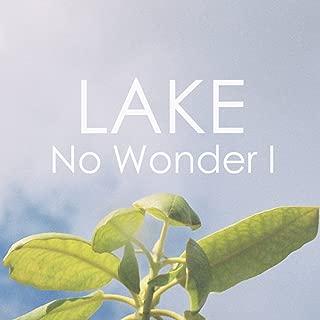 No Wonder I - Single