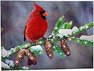 BANBERRY DESIGNS Winter Cardinal Print - LED Light Up Christmas Canvas Picture - Red Cardinal Bird on a Birch Branch with Pine Cones and Snowy Background - 16 X 12