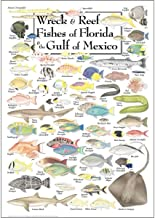 Heritage Puzzle Inc. Wreck & Reef Fish of Florida & The Gulf of Mexico 550 Piece Jigsaw Puzzle