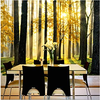 xbwy Custom 3D Natural Scenery Mural Wallpaper Forest Under The Sunshine Beautiful Scene Wall Paper for Living Room Tv Sofa Backdrop-400X280Cm