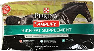Best amplify for horses Reviews
