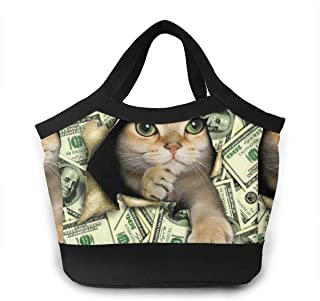 Lunch Box Totebox Non-Toxic Polyester Lunch Organizer Reusable Storage Bag Container Cute Cat with American Dollar Sign Snack Bag for Women Men Kids Girl Boy, Work School Picnic Beach