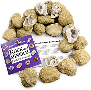 "50 Break Your Own Geodes, 90% Hollow Large ( 2-2.5"") Easy Crack Open & Discover Surprise Crystals Inside! Educational Info and Instructions Included, Fun Party Favors & Prizes, Dancing Bear Brand"
