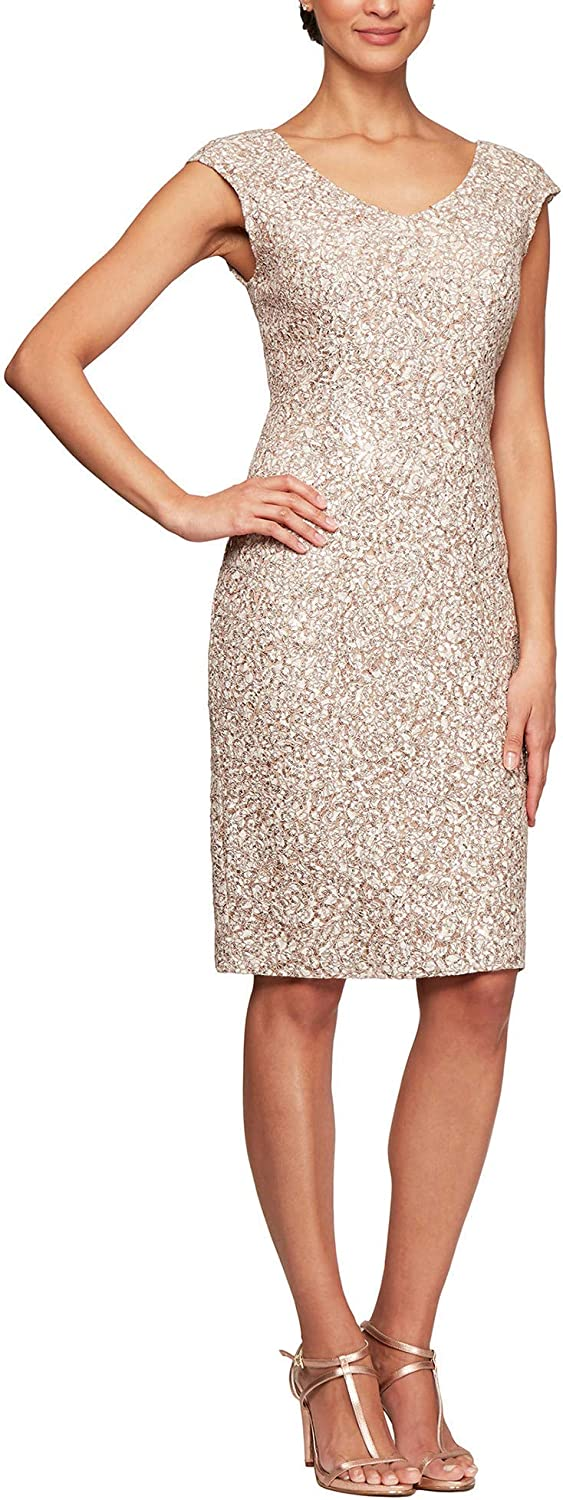 Alex Evenings Women's Shift Midi Lace Embroidered Dress (Petite and Regular)