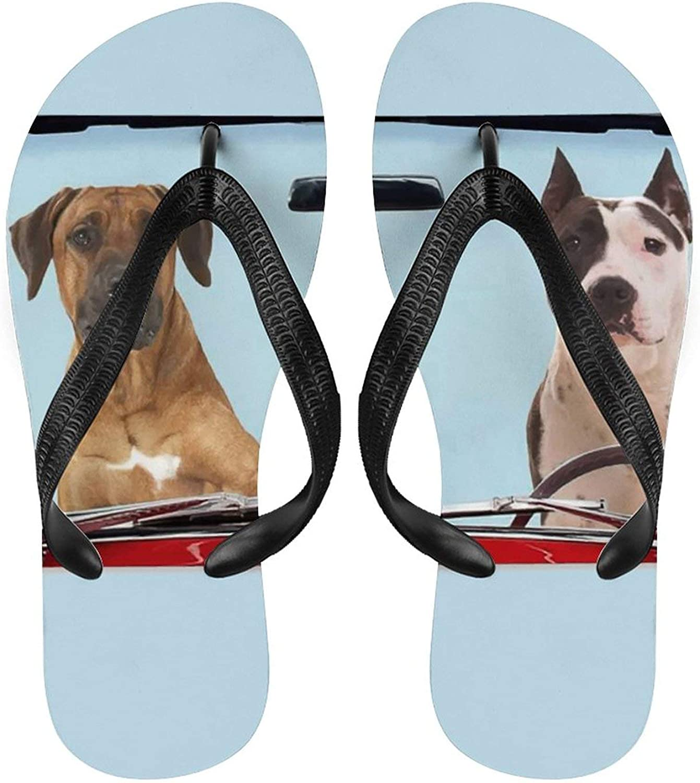 Women Flip Max 43% OFF Flop Funny Dog Drive Mat Sli Yoga Comfort Courier shipping free shipping Cart Sandal