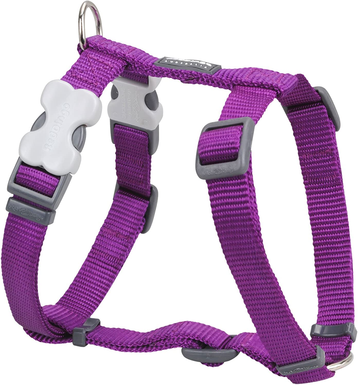Red Dingo Purple Medium Dog Harness (Chest  1826 in (4566 cm))