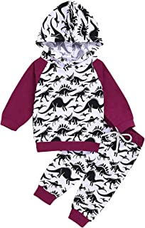 Camidy Baby Boy Girl Dinosaur Print Hooded Hoodie + Pants Trousers Outfit Clothes Set
