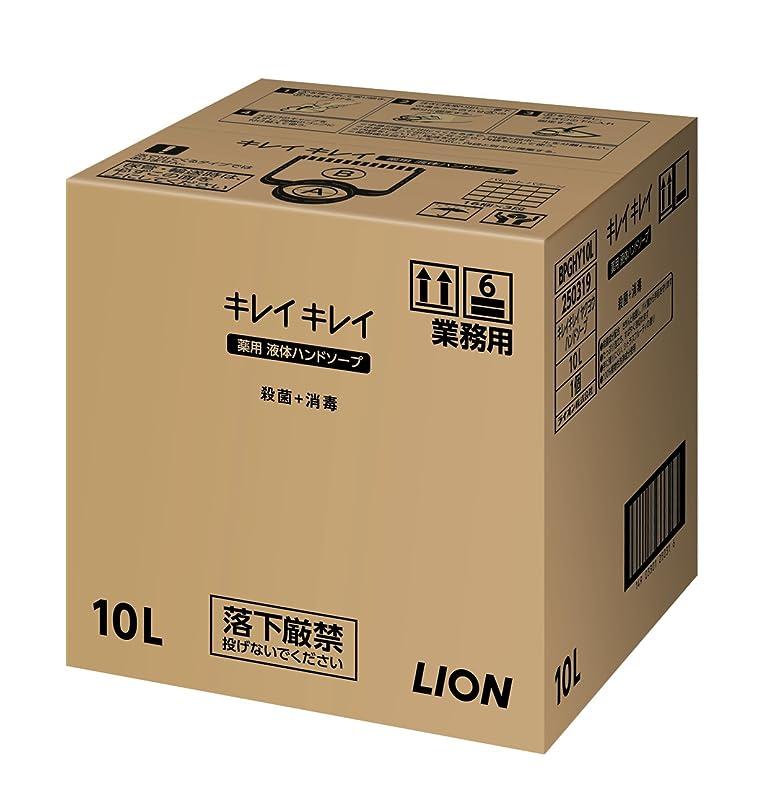 シャベル藤色テクスチャー【大容量】キレイキレイ薬用ハンドソープ10L