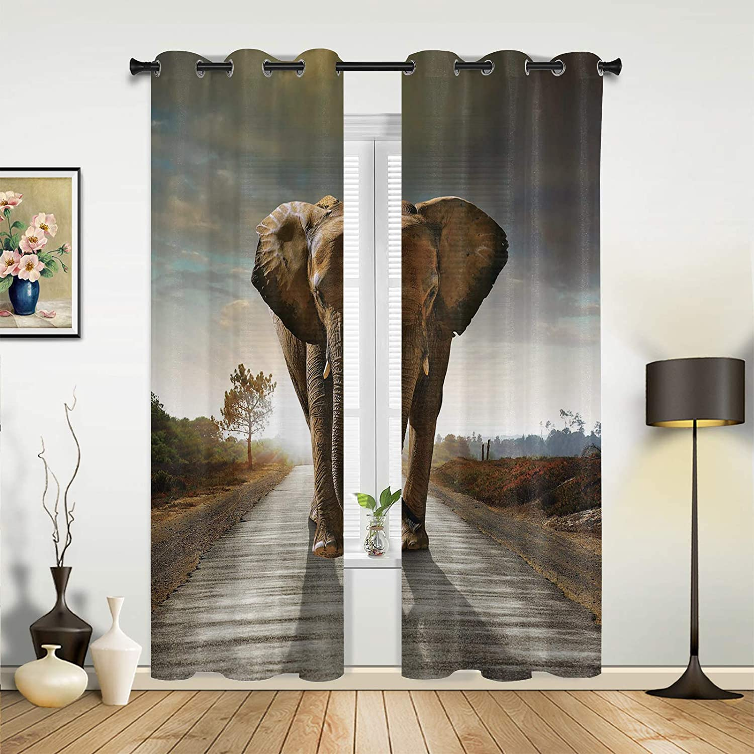 Beauty Decor Window Max 63% OFF Sheer Curtains for Funny Bedroom Max 60% OFF Room Living