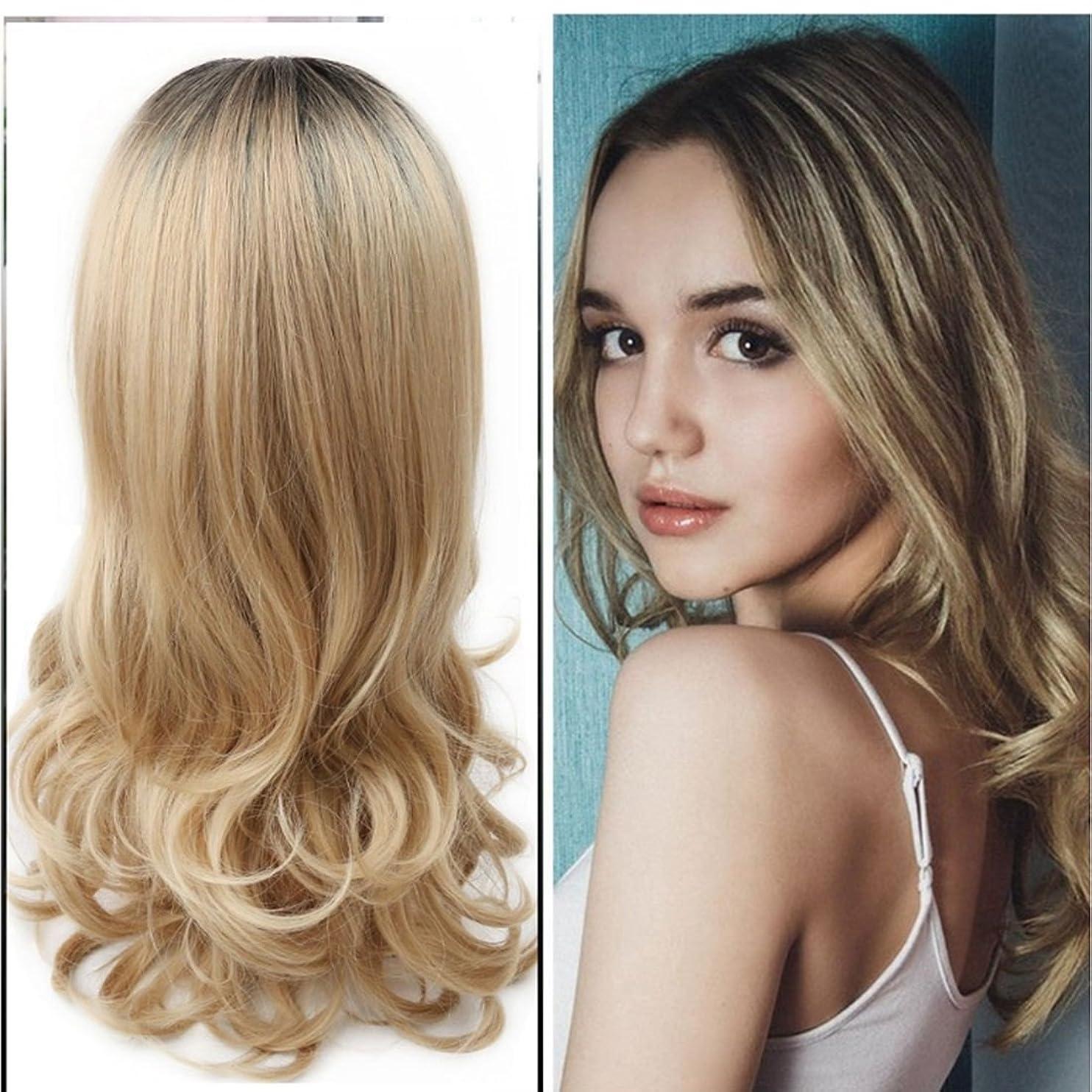 勢いサンプルサイレントKoloeplf 女性 化学繊維 かつら 耐熱 自然な 巻き髪 グラデーション かつら (Color : Black brown gradient)