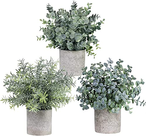 Winlyn Set of 3 Mini Potted Artificial Eucalyptus Plants Plastic Fake Green Rosemary Plant for Home Decor Office Desk...