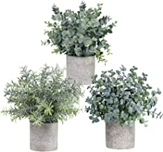 Winlyn Set of 3 Mini Potted Artificial Eucalyptus Plants Plastic Fake Green Rosemary..