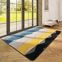 """Indoor Doormat Front Back Door Mat, 47""""x67"""" Water Absorbent Low-Profile Mud Mat Non Slip Large Door Rug for Inside Entranc..."""