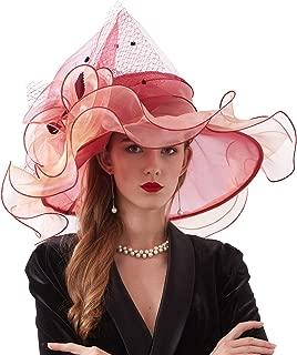 Women's Organza Kentucky Derby Church Fascinator Fancy Floral Bridal Wedding Hat