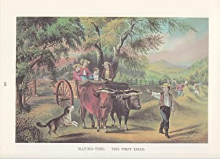 """1974 Vintage Currier /& Ives HUNTING /""""HUNTER CATCHING A TARTAR/"""" COLOR Lithograph"""