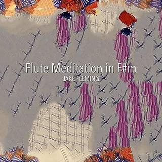 Flute Meditation in F#m